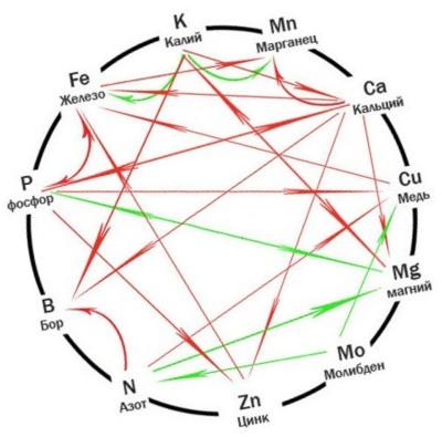 Схема Малдера