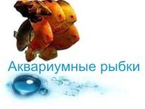 Аквариумные рыбки для аквариума с